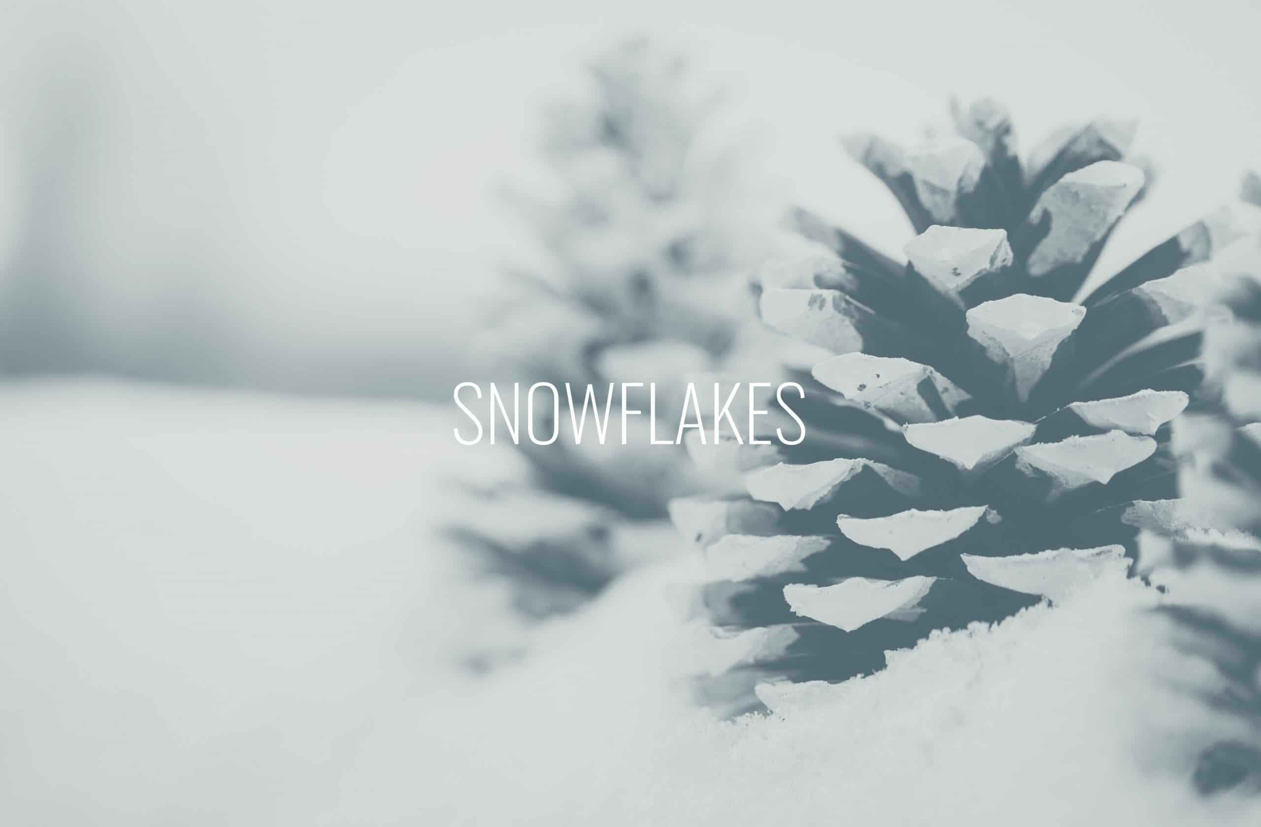 """Featured image for """"Snowflakes"""""""